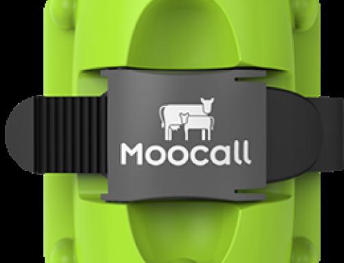 MOOCALL (détecteur de vélage)